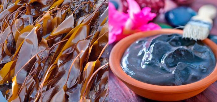 Антицеллюлитное обертывание с ламинарией и глиной