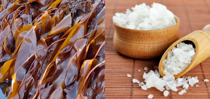 Антицеллюлитные обертывания с ламинарией и солью